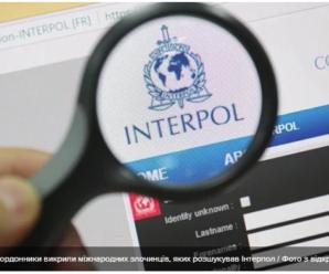 Українські прикордонники викрили міжнародних злочинців, яких розшукував Інтерпол