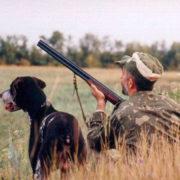 На Калущині мисливцям доручили відстріляти диких тварин