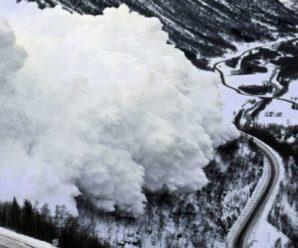 У Карпатах на трасу Мукачеве – Рогатин – Львiв зійшла снігова лавина (фото)