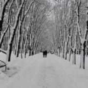 Морози до -30? Яку погоду прогнозують синоптики для України на лютий