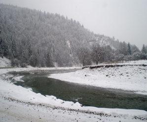 На Івано-Франківщині у річці знайшли тіло загиблого 22-річного чоловіка