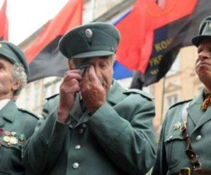 Ветеранів УПА визнали учасниками бойових дій. Коли будуть пільги