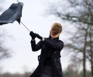 У неділю на Прикарпатті очікується штормовий вітер