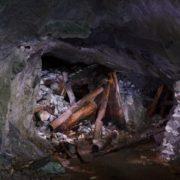 Цього шахтаря знайшли живим через 17 років після обвалу шахти…