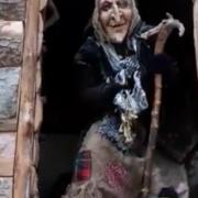 У Галицькому парку поселилася чаклунка (відеосюжет)