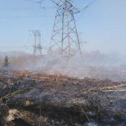 У Франківську через масштабну пожежу вигоріло 50 гектарів лісу
