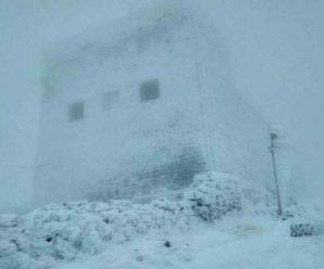 """""""Видимість обмежена"""": В розпал весни Карпати засипало снігом. Рятувальники попереджають про небезпеку"""
