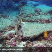 Біля берегів Анталії виявили торгове судно, що затонуло понад три тисячі років тому