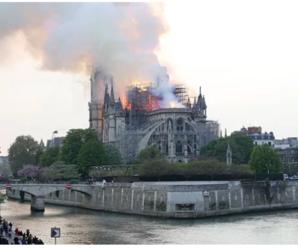 Реакція Порошенка та Зеленського на пожежу в Соборі Паризької Богоматері