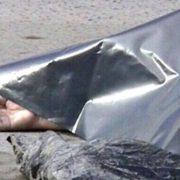 У Франківську у канаві знайшли тіло невідомої людини