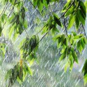 Сьогодні на Прикарпатті очікуються сильні дощі, гроза і град