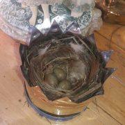 У капличці на Калущині в короні Божої Матері пташка звила гніздо. ФОТО