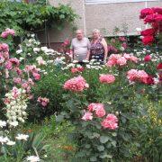 На Івано-Франківщині подружжя засадило двір сотнями квітів