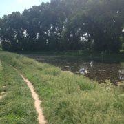 На Прикарпатті рибалка знайшов жінку, яка два тижні тому пішла на пасовище та зникла