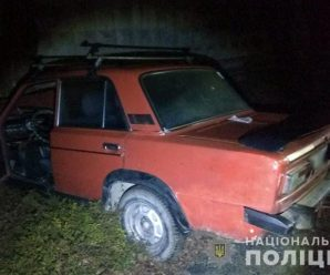 Надвірнянський суд відпустив водія, який насмерть збив жінку