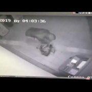В мережі з'явилось відео, як у Калуші зловмисник підірвав банкомат та хотів викрасти готівку. ВІДЕО