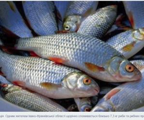 У середньому прикарпатець щорічно споживає близько 7,3 кг риби — статистика