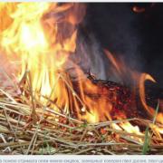 На Прикарпатті від опіків померла 42-річна жінка, яка спалювала солому