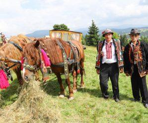 У Карпатах проведуть свято гуцульської фіри та коня
