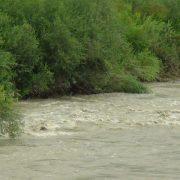 Троє малих киян застрягли посеред гірської річки: визволяли рятувальники