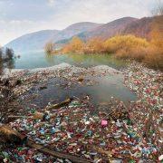 Українці створили додаток, щоб очистити Карпати