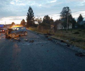 За кермом автівки, яка збила насмерть двох дітей на Долинщині, був депутат сільради