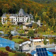 Періс Хілтон придбає курорт у Карпатах