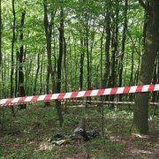 Вдарився головою об камінь: на Прикарпатті у лісі виявили тіло чоловіка