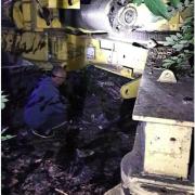 На Прикарпатті затримали на гарячому крадія кабелів з електрощитової. ФОТО