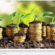 У Прикарпаття вкладено понад 900 млн доларів прямих іноземних інвестицій