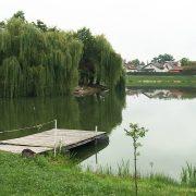 Стало відомо, чому в Коломиї в міському озері втопився чоловік. ВІДЕО