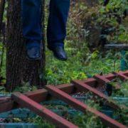 Чоловік на Прикарпатті повісився на дереві