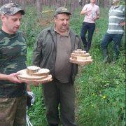 Сосновий ліс у Підгірках обстежила комісія