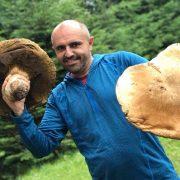 На Івано-Франківщині знайшли велетенський білий гриб