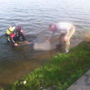 На Прикарпатті з озера витягли тіло чоловіка