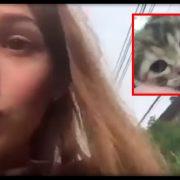«Фейк чи шкуродерство»: суспільство шокувало відео, де дівчина заради лайків втопила кошеня (ВІДЕО)