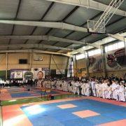 У Франківську більше 420 учасників взяли участь в змаганні з Таеквон-До