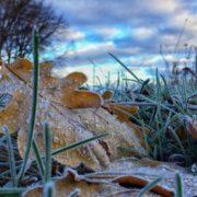 Штормове попередження: На Прикарпатті очікуються морози до -5º