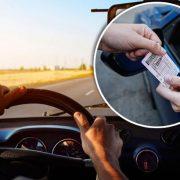Українські водії зможуть їздити без прав