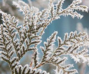 Подих зими: на Україну рухається нова хвиля похолодання (мапа)