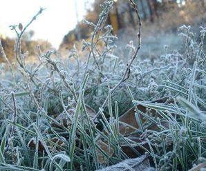Перший сніг та заморозки: синоптики дали неочікуваний прогноз