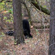 Чоловік повісився у лісі на Прикарпатті