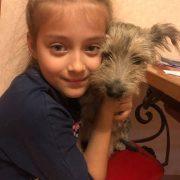 За два місяці волонтери прилаштували у нові домівки понад 100 безпритульних тварин (ФОТО)