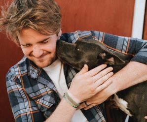 Пес-терапія: собаки лікують навіть там, де медикаменти не діють