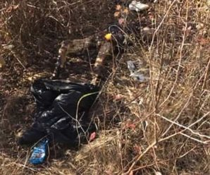 """""""Голова й руки перебували окремо"""": жахлива знахідка вразила всю Україну. Заховані рештки людини(ФОТО)"""
