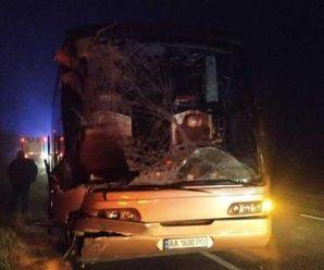 Пасажирський автобус зіштовхнувся із вантажівкою: є загиблі та багато постраждалих (фото)