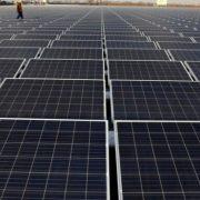 На Прикарпатті відкрили потужну сонячну електростанцію