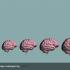Неграмотність може спровокувати серйозні порушення мозку