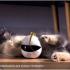 Створили робота-компаньйона для котиків: що він вміє