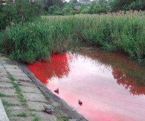 У Калуші річка стала червоною
